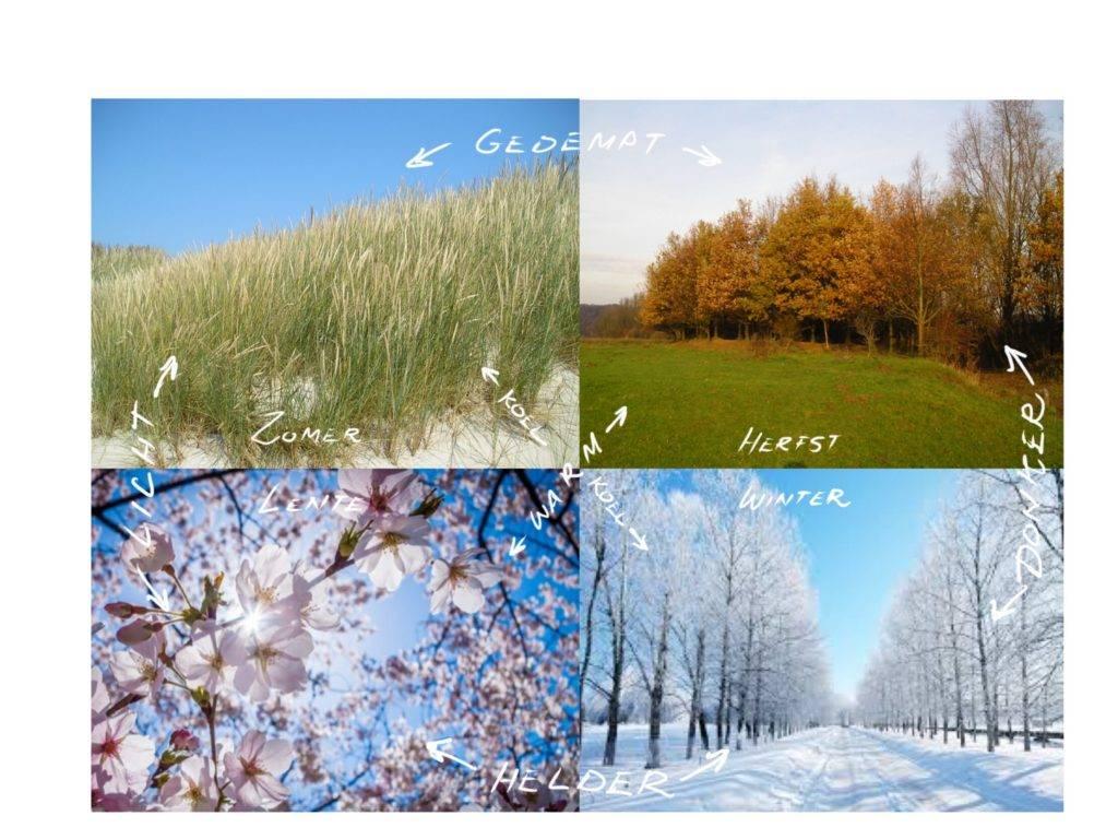 Kleur meer dan de vier seizoenen